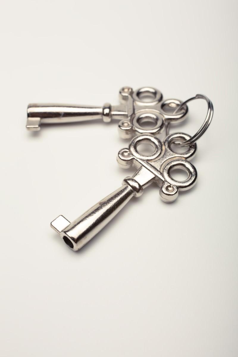 「おもちゃの鍵おもちゃの鍵」のフリー写真素材を拡大