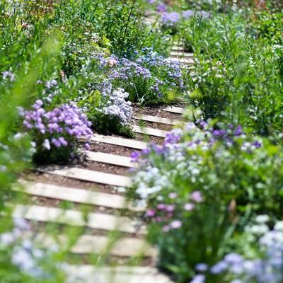 「陽気な春の気持ち」の写真素材