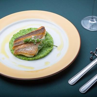 「ブロッコリーソースに乗った真鯛のロースト」の写真素材