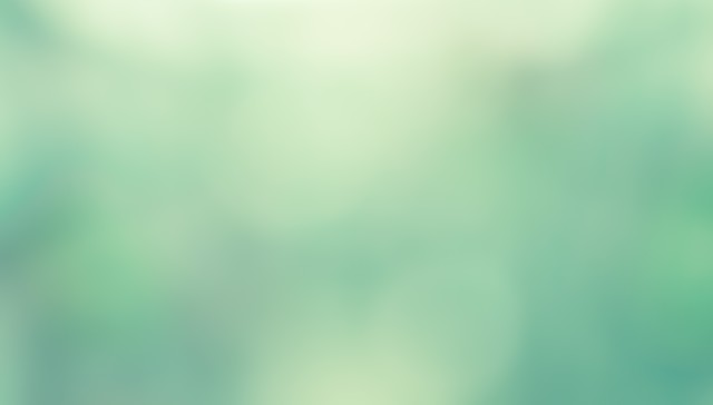 緑色の光の写真