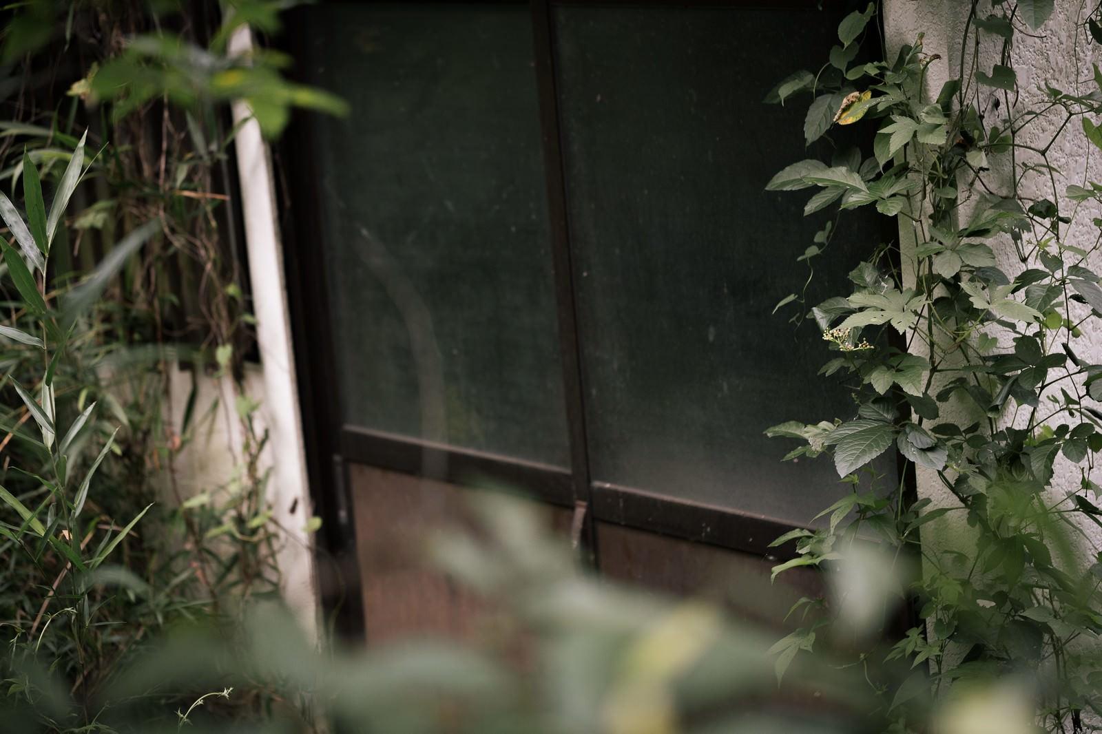 「長い時間、扉が閉まったままの民家」の写真