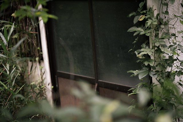 長い時間、扉が閉まったままの民家の写真