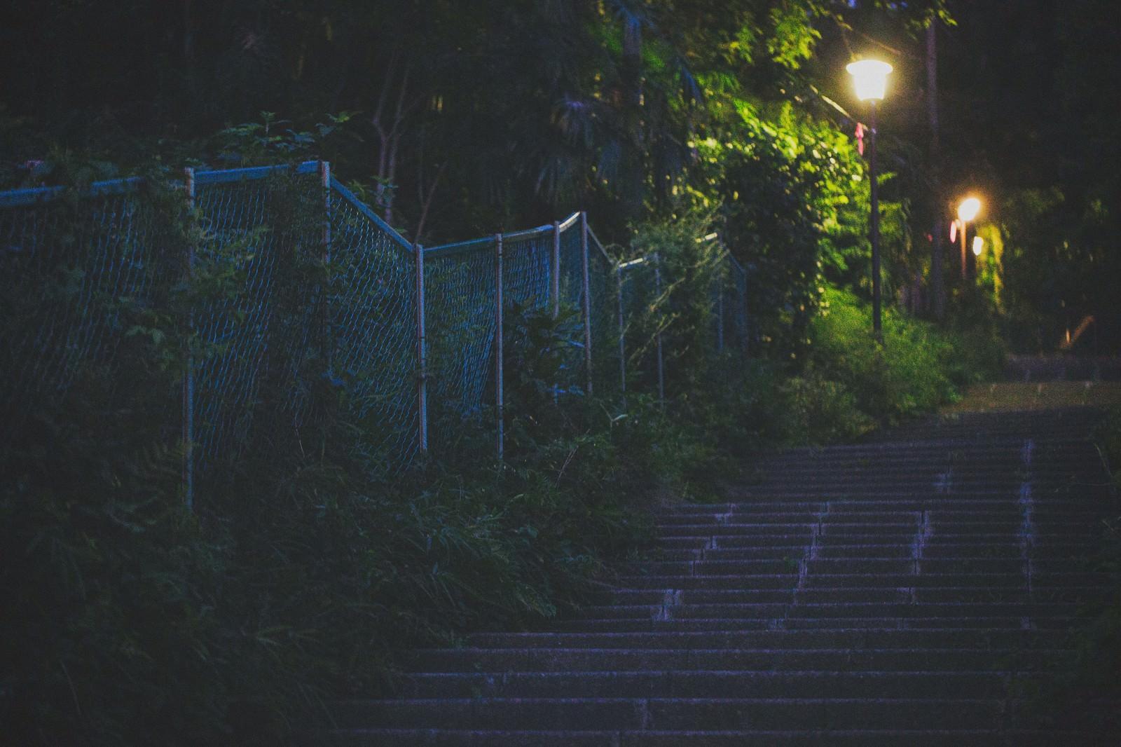 「暗い階段と街灯」の写真