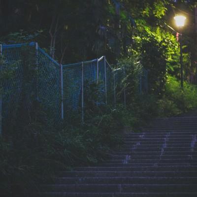 「暗い階段と街灯」の写真素材