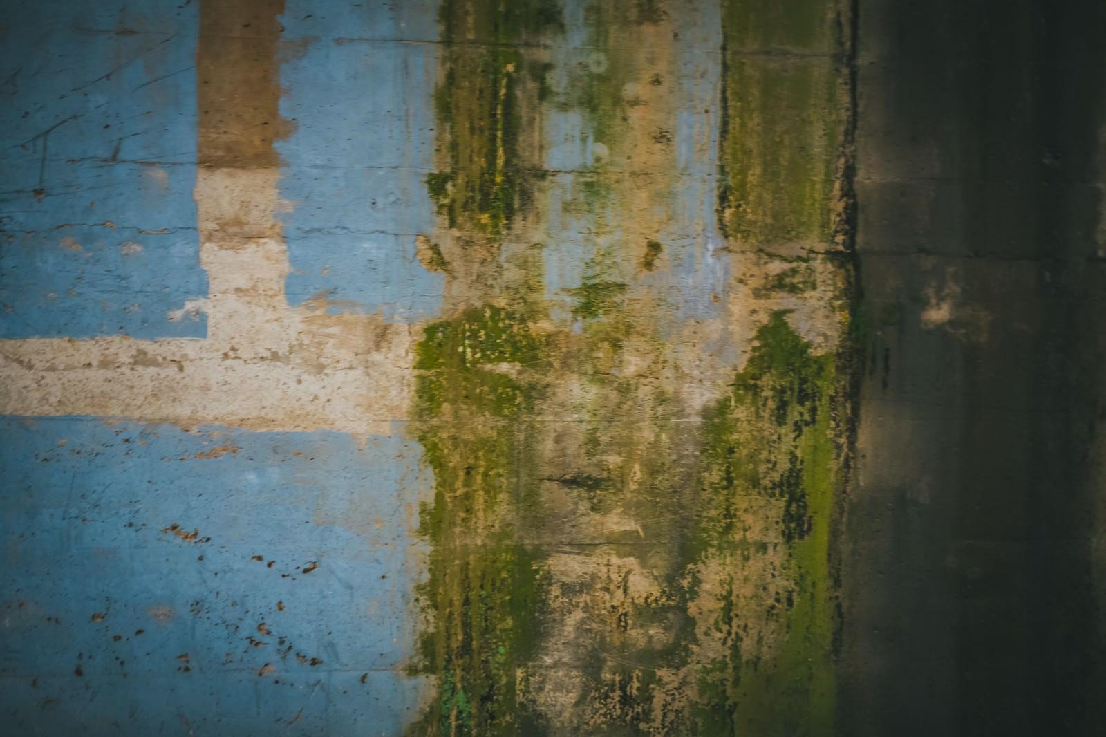 「塗装が剥がれ落ちた壁」の写真