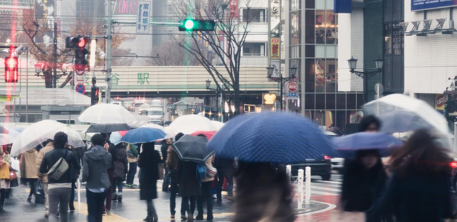 「雨の渋谷駅」の写真