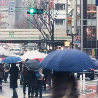 雨の渋谷駅の写真