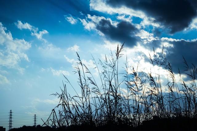 河川敷と空の写真