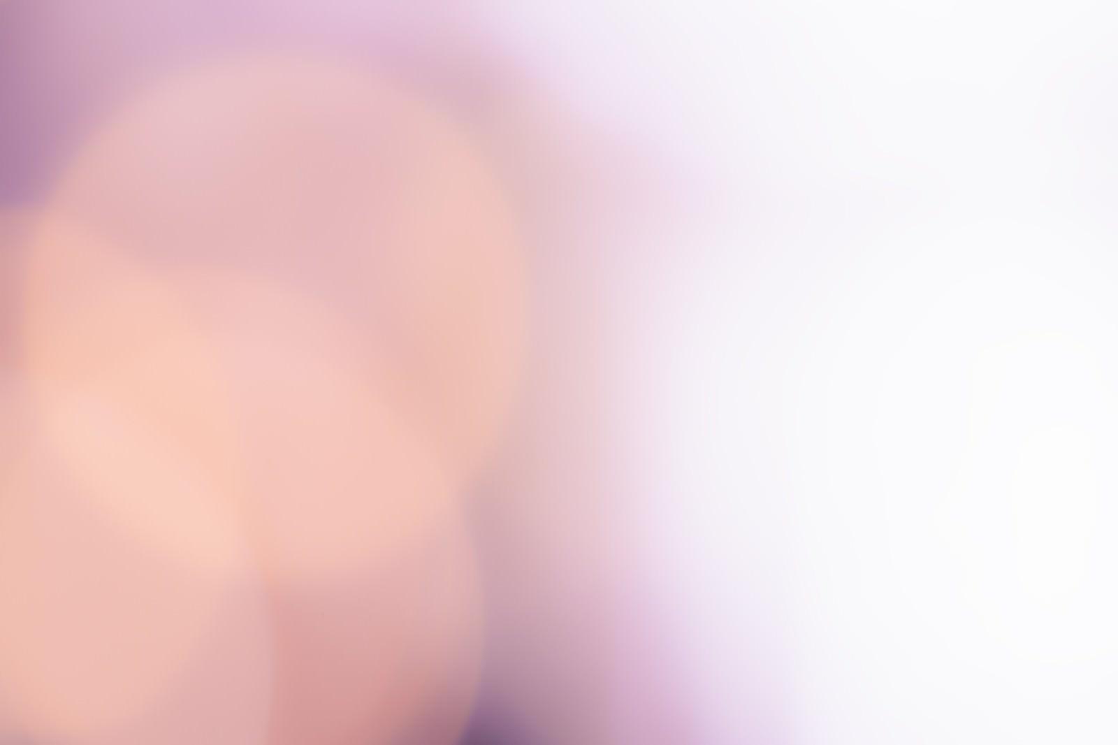 「あふれる白い光」の写真