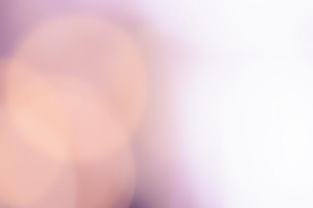 あふれる白い光の写真