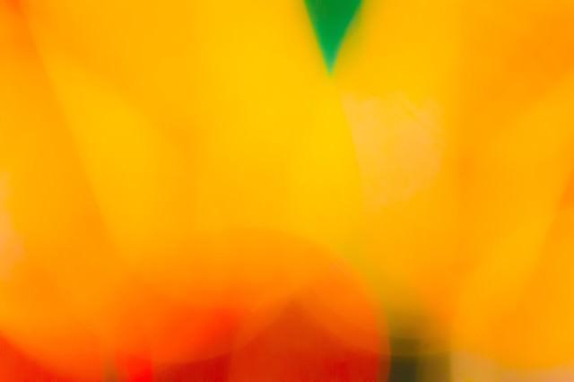 淡いオレンジの写真