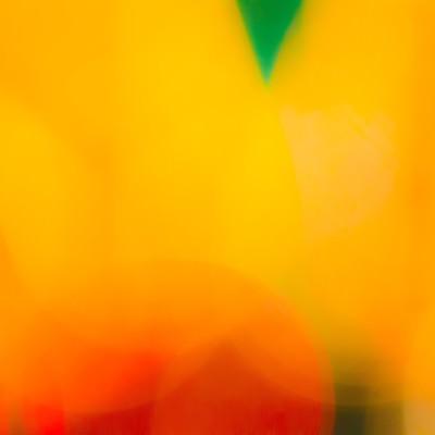 「淡いオレンジ」の写真素材