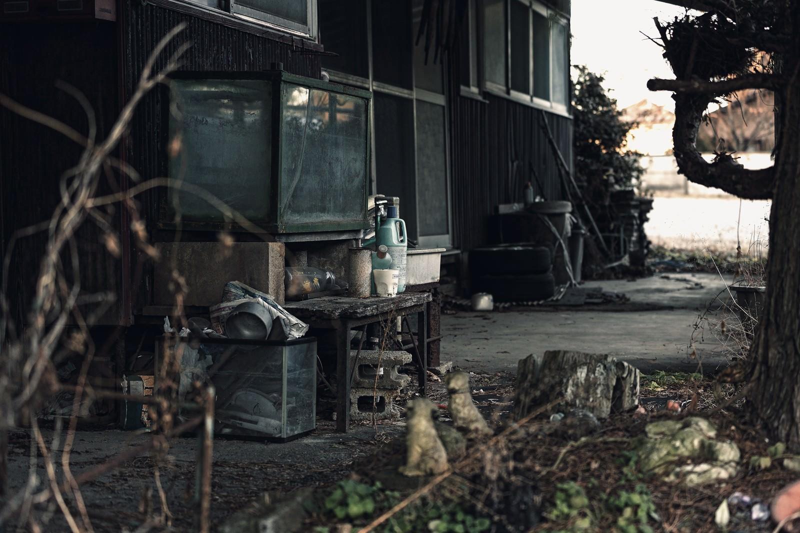 「不気味な廃屋の庭」の写真
