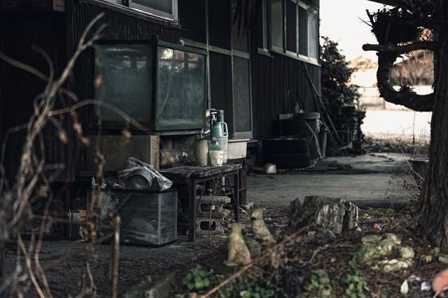 不気味な廃屋の庭の写真