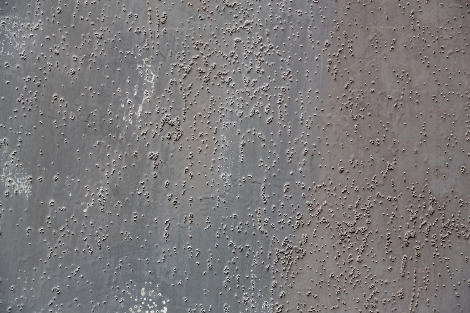 「ぶつぶつした壁」の写真