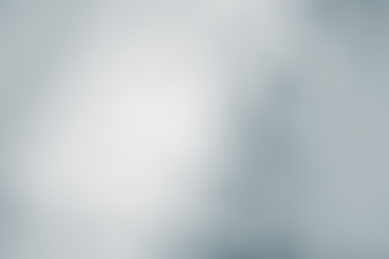 「灰色のボケ」の写真