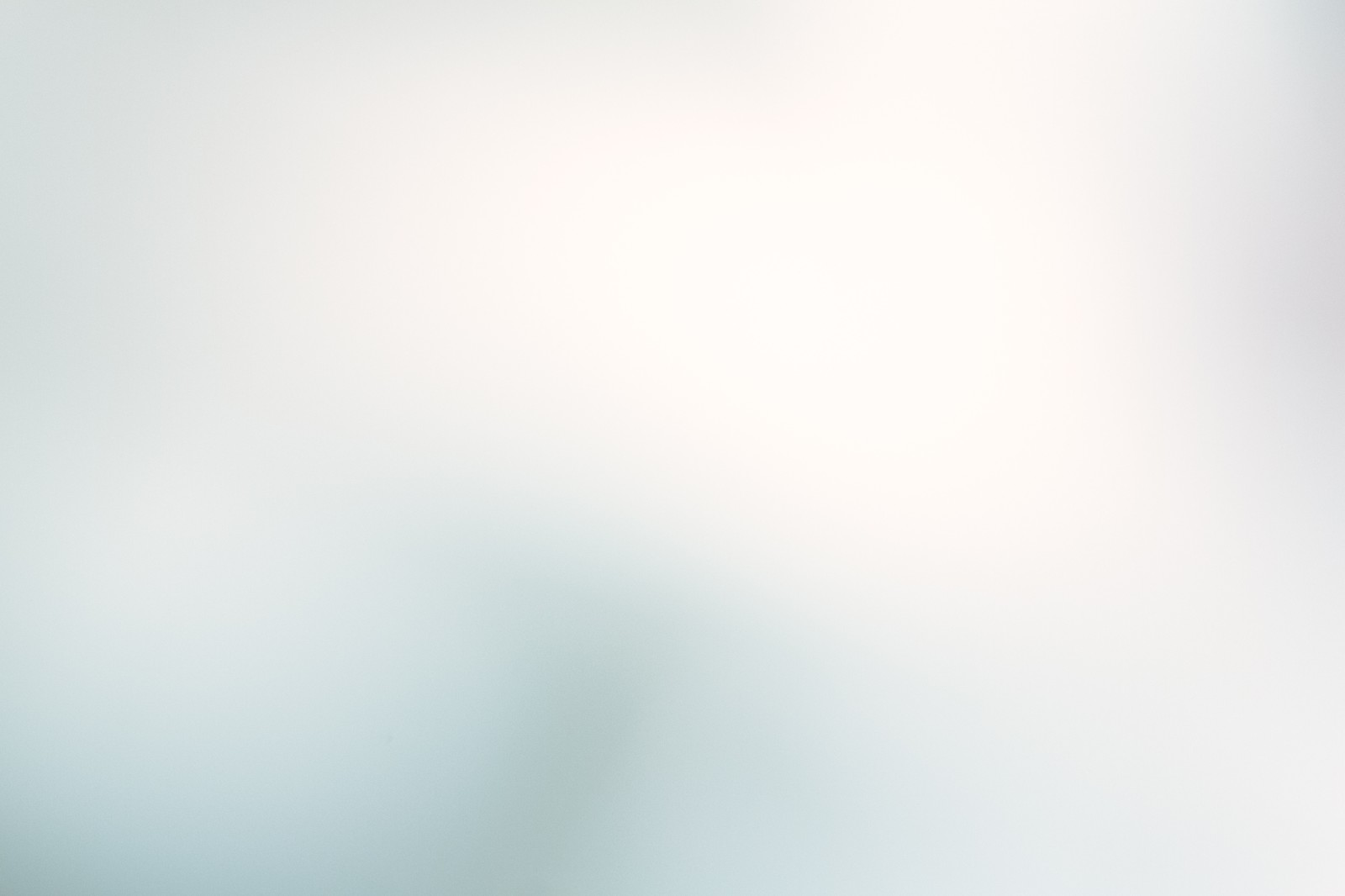 「淡い光に包まれて」の写真