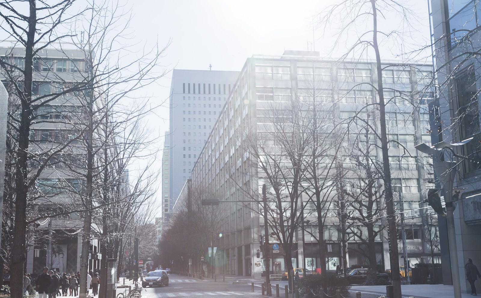 「日差しが温かい街並み」の写真