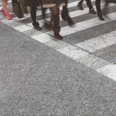 「横断歩道と人の足」の写真素材