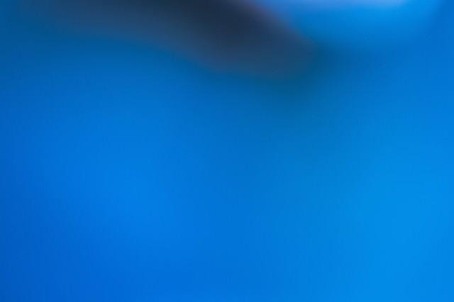 不気味な青い光の写真