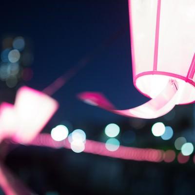 「桜まつりの提灯」の写真素材