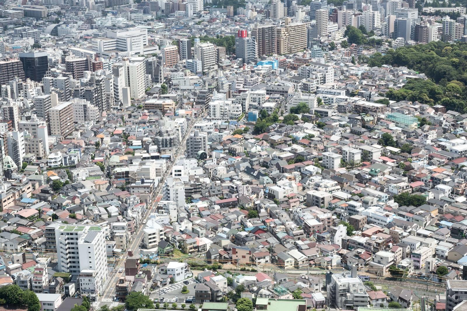 「市街地を見下ろす」の写真