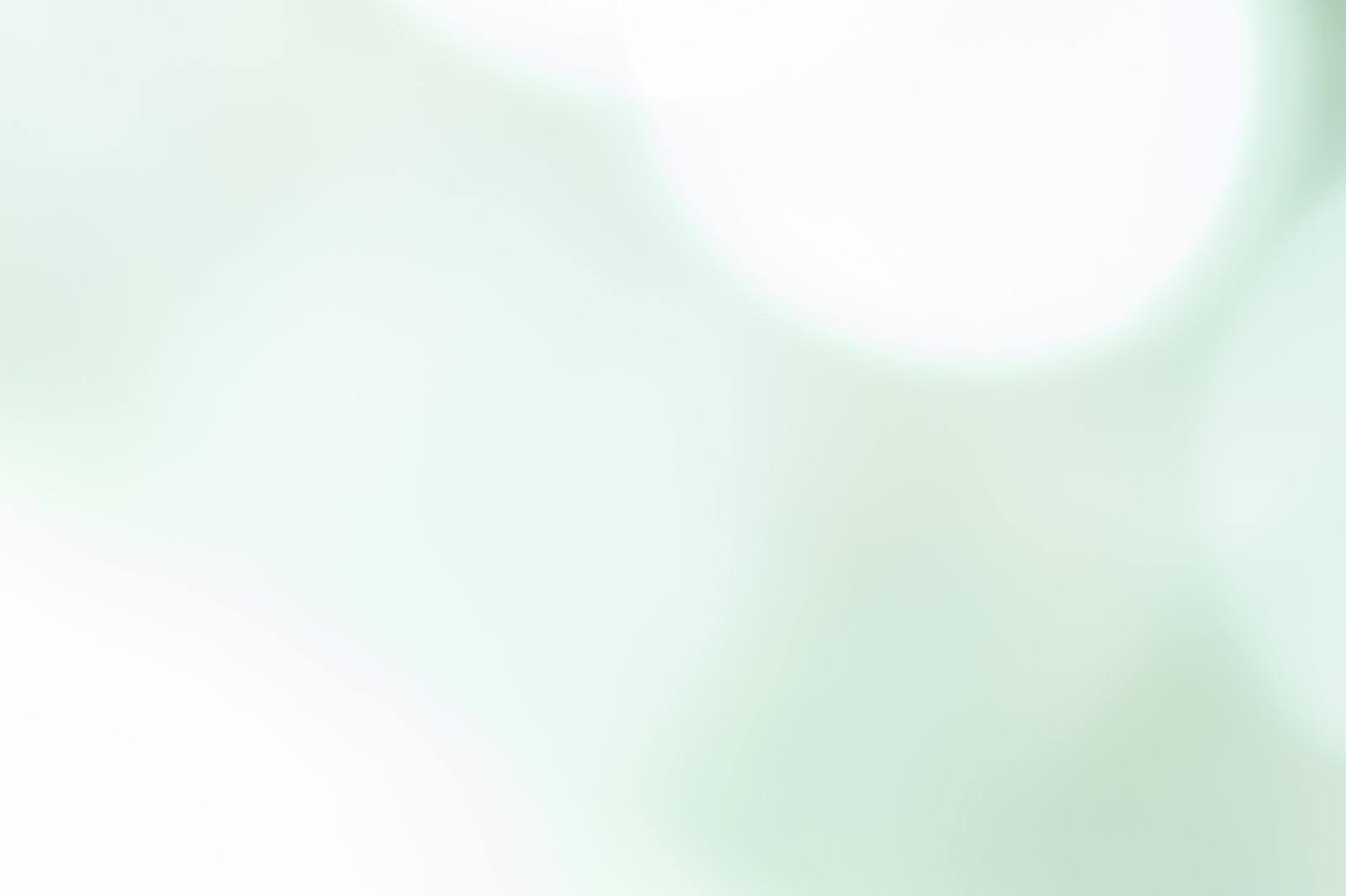 「淡く緑の光」の写真