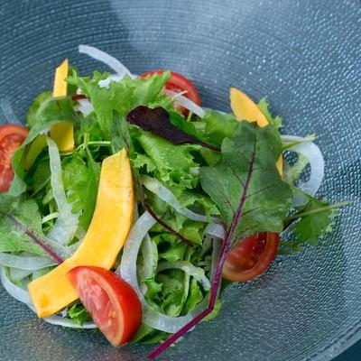 「産直無農薬サラダ」の写真素材