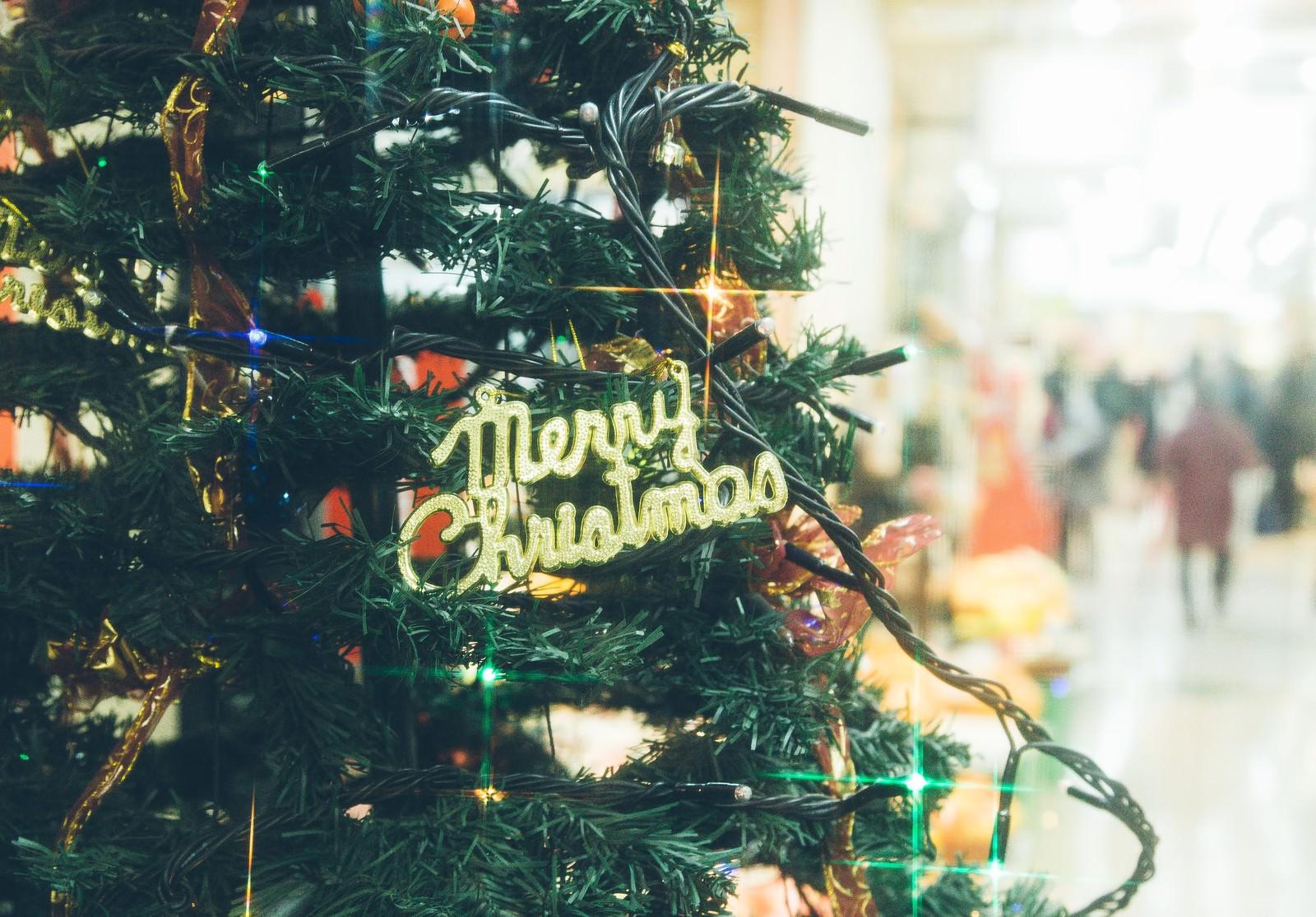 「クリスマスツリーと賑わいクリスマスツリーと賑わい」のフリー写真素材を拡大
