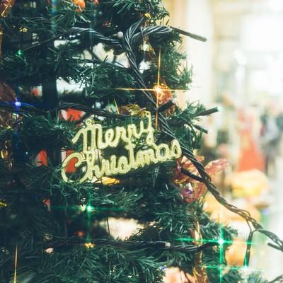 クリスマスツリーと賑わいの写真