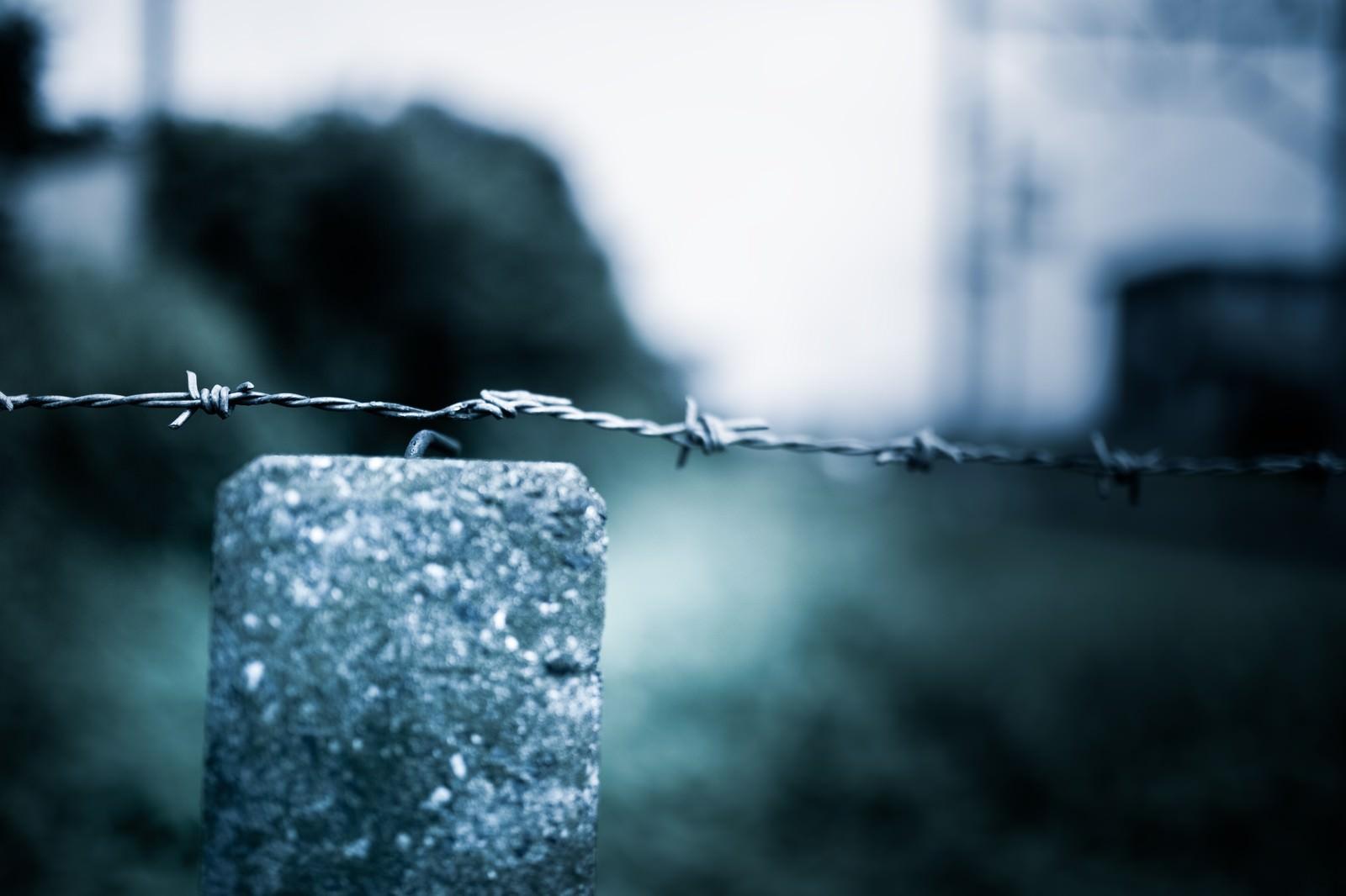 「進入禁止の薔薇線」の写真