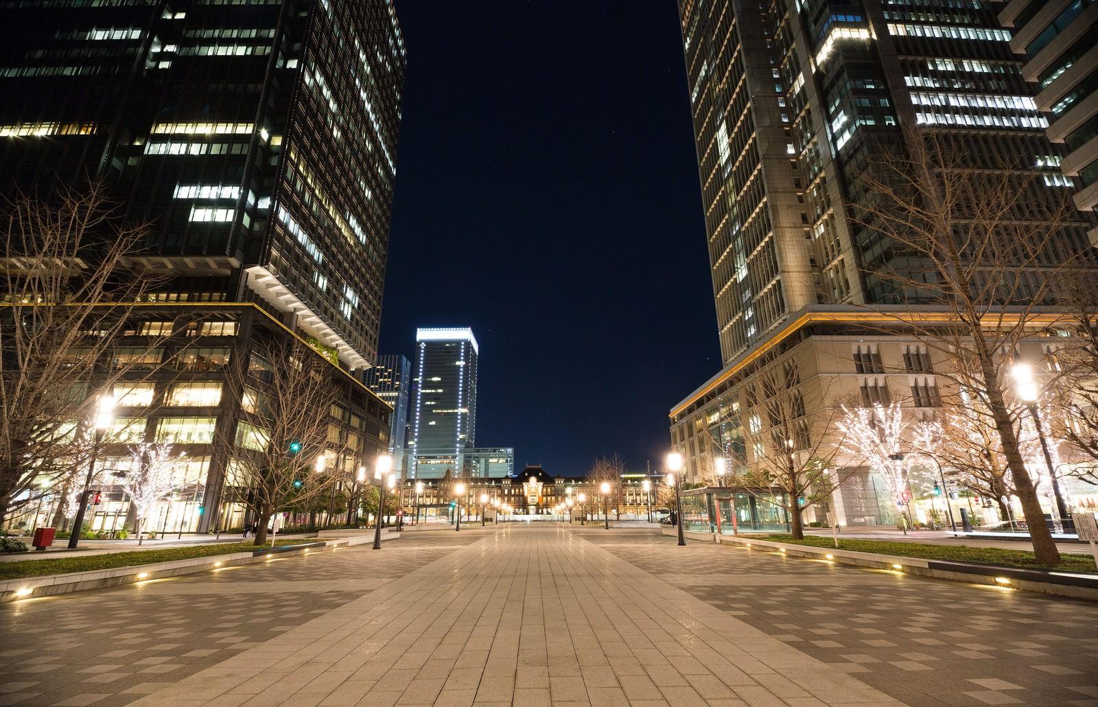「東京駅丸の内正面通りからの夜景」の写真