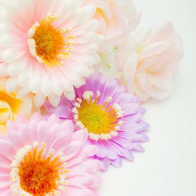「プレゼント用の造花」の写真素材