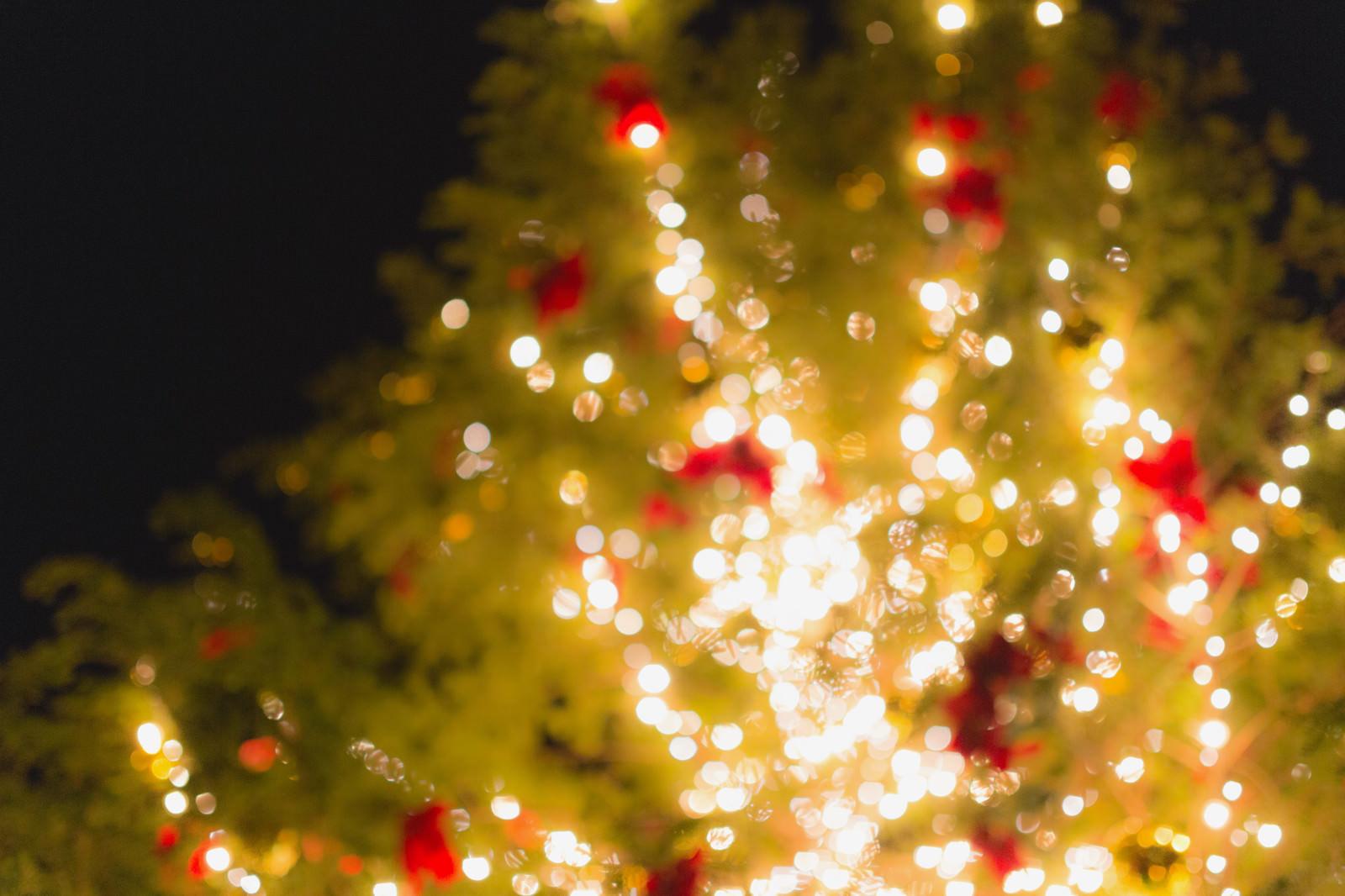 「点灯をはじめたクリスマスツリー点灯をはじめたクリスマスツリー」のフリー写真素材を拡大