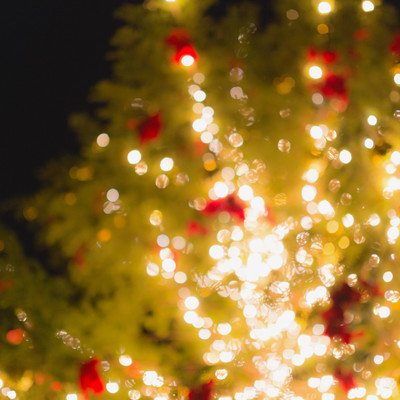 「点灯をはじめたクリスマスツリー」の写真素材