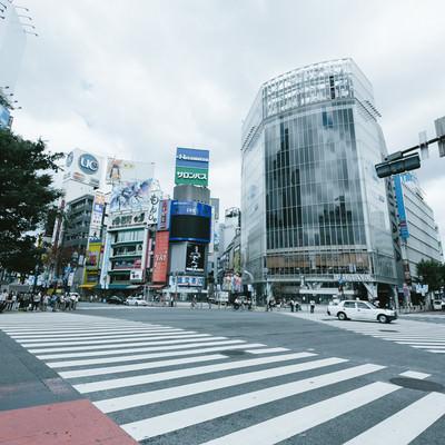 「渋谷スクランブル交差点」の写真素材