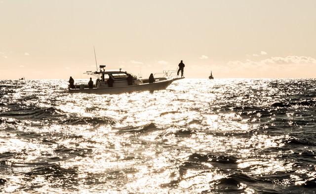 沖合の釣り船の写真