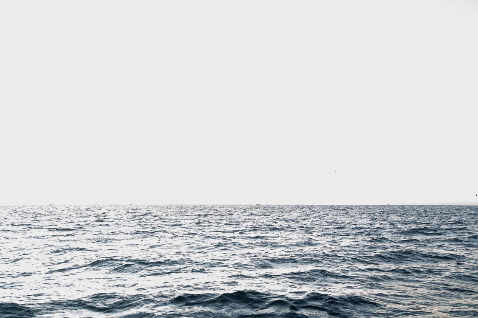 「沖合の海」の写真