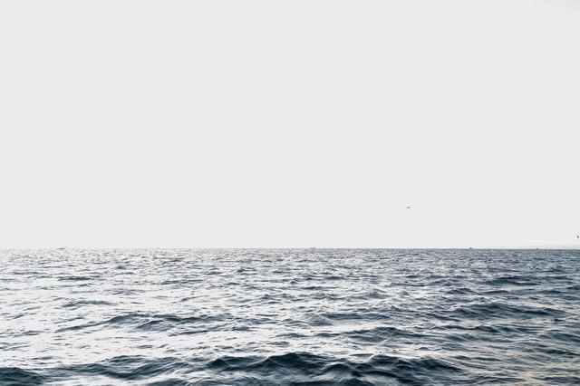 沖合の海の写真