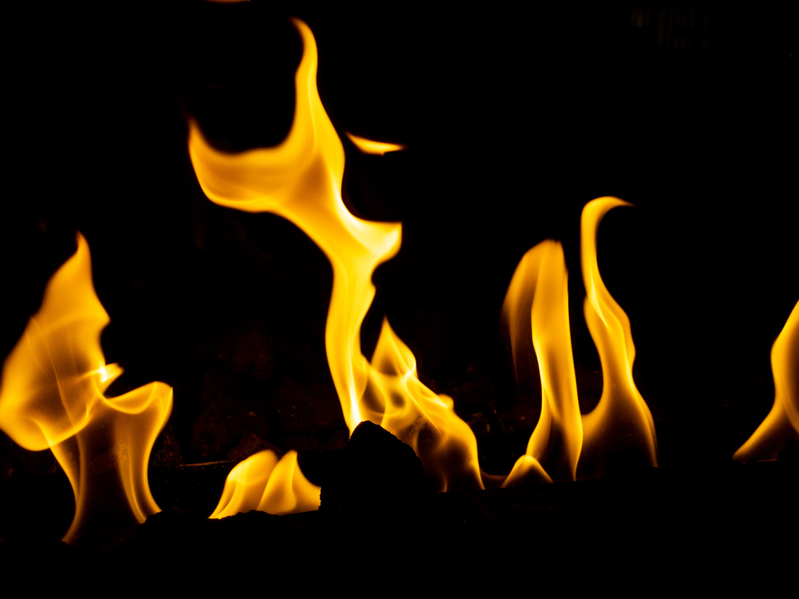 「燃え盛る炎」の写真