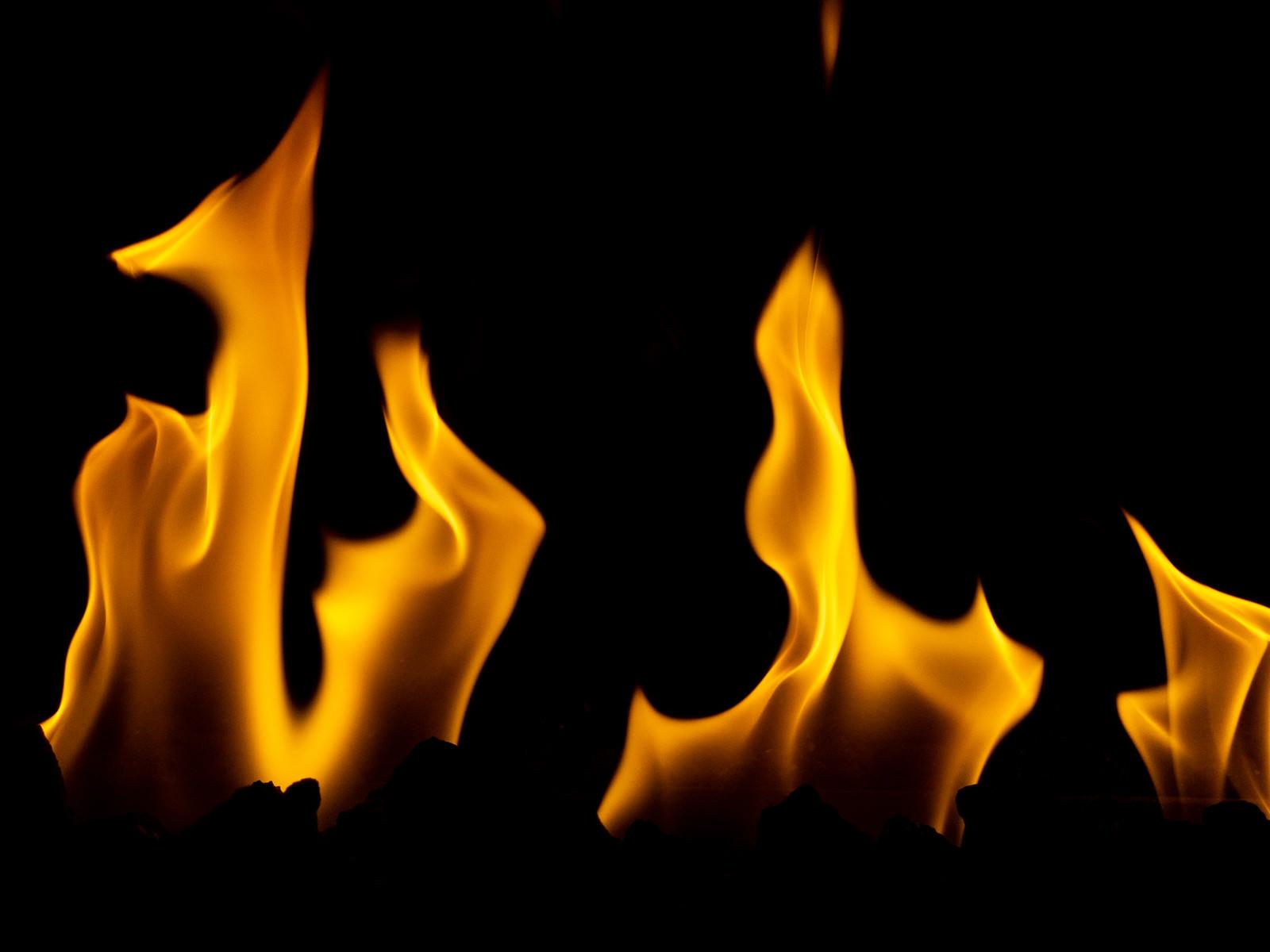 「火炎」の写真