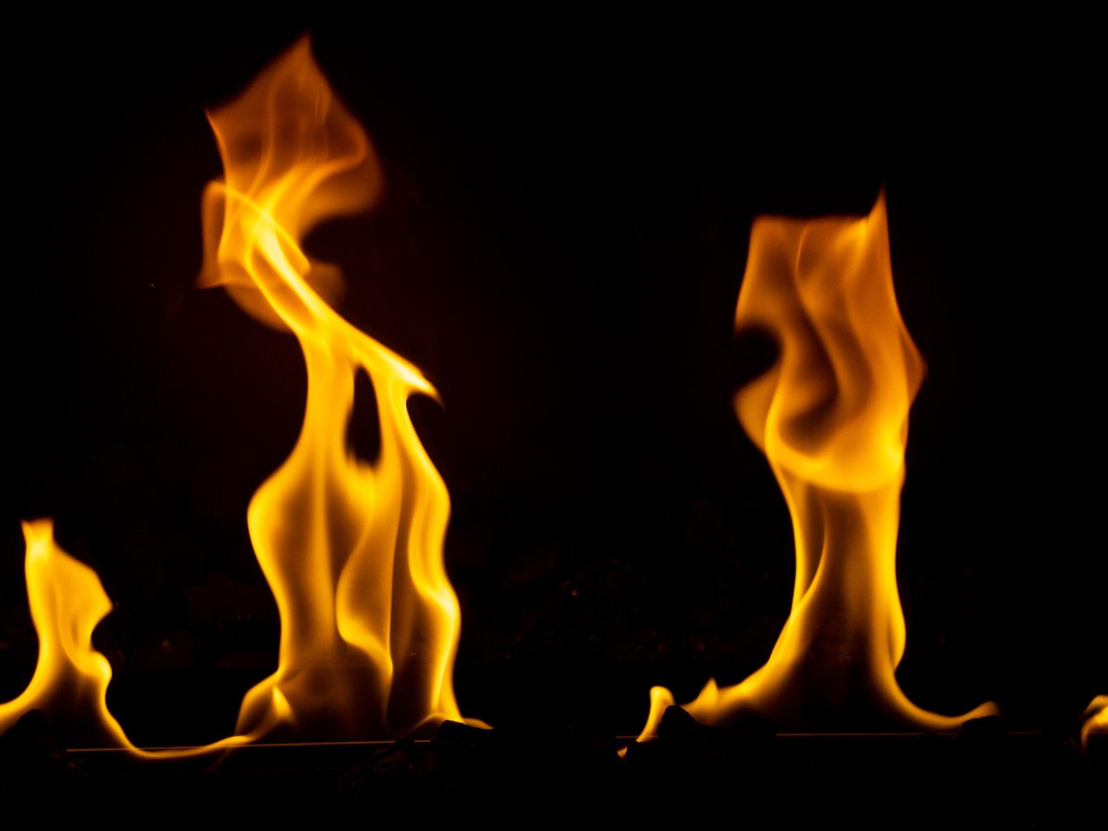 「メラメラと燃え上がる様子」の写真