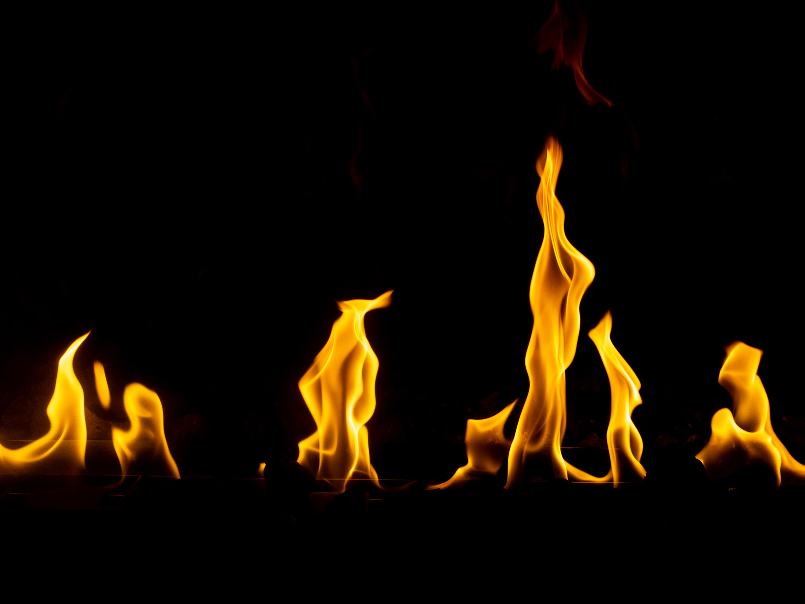 「メラメラ燃える」の写真