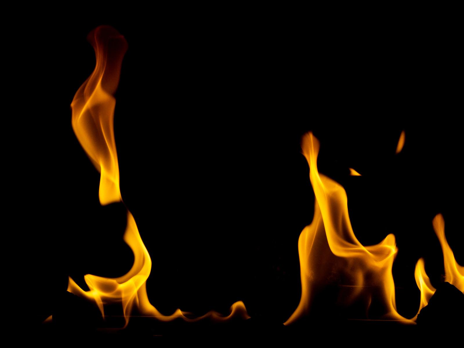 「ゆらりと燃える炎」の写真