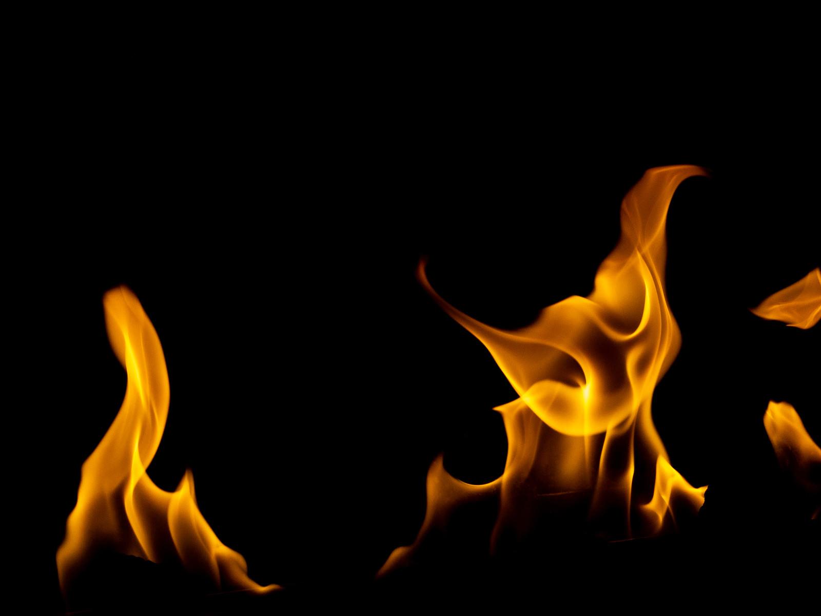 「ごおぉ!!(炎)」の写真