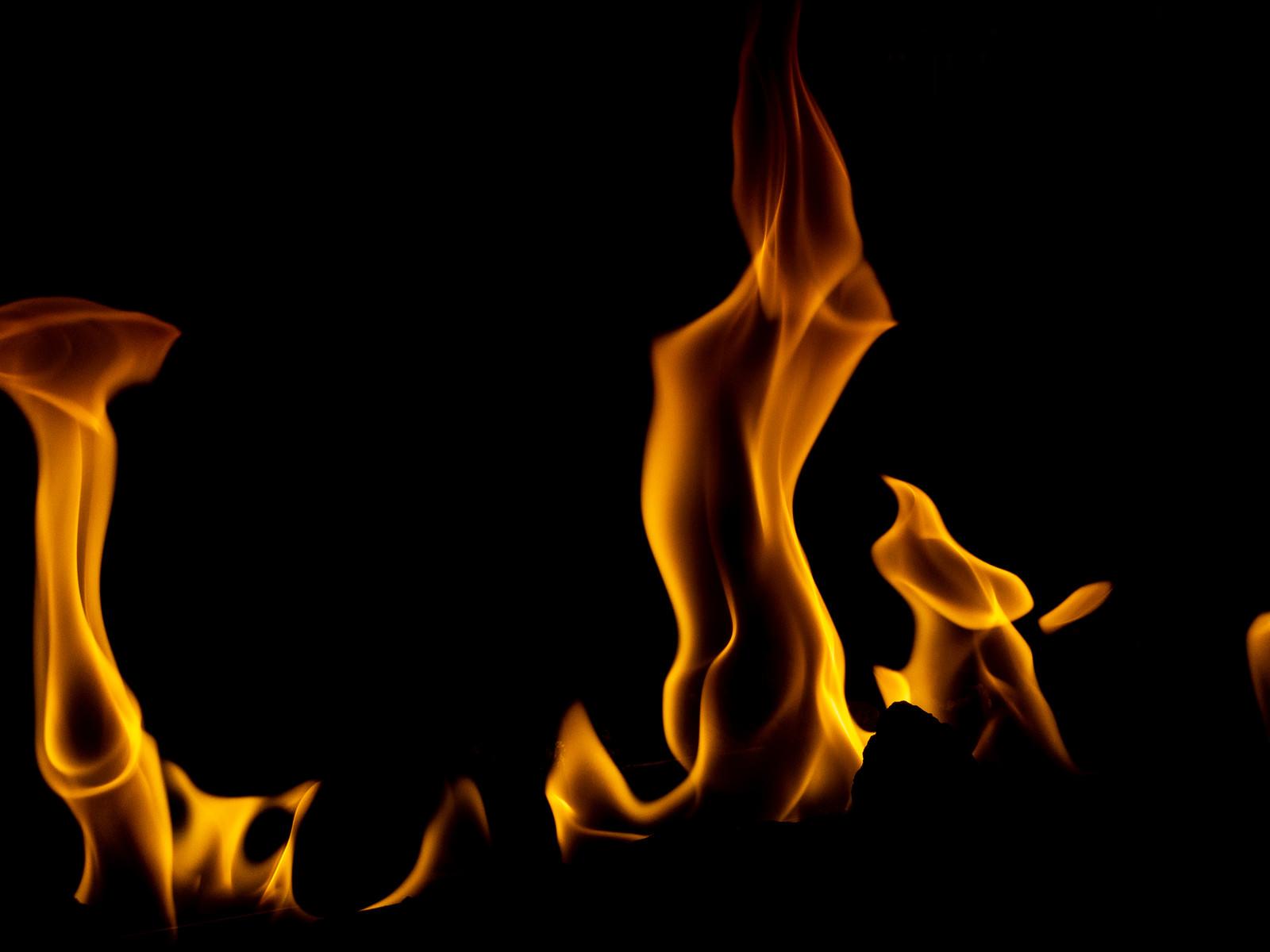 「メラメラと燃(も)える」の写真