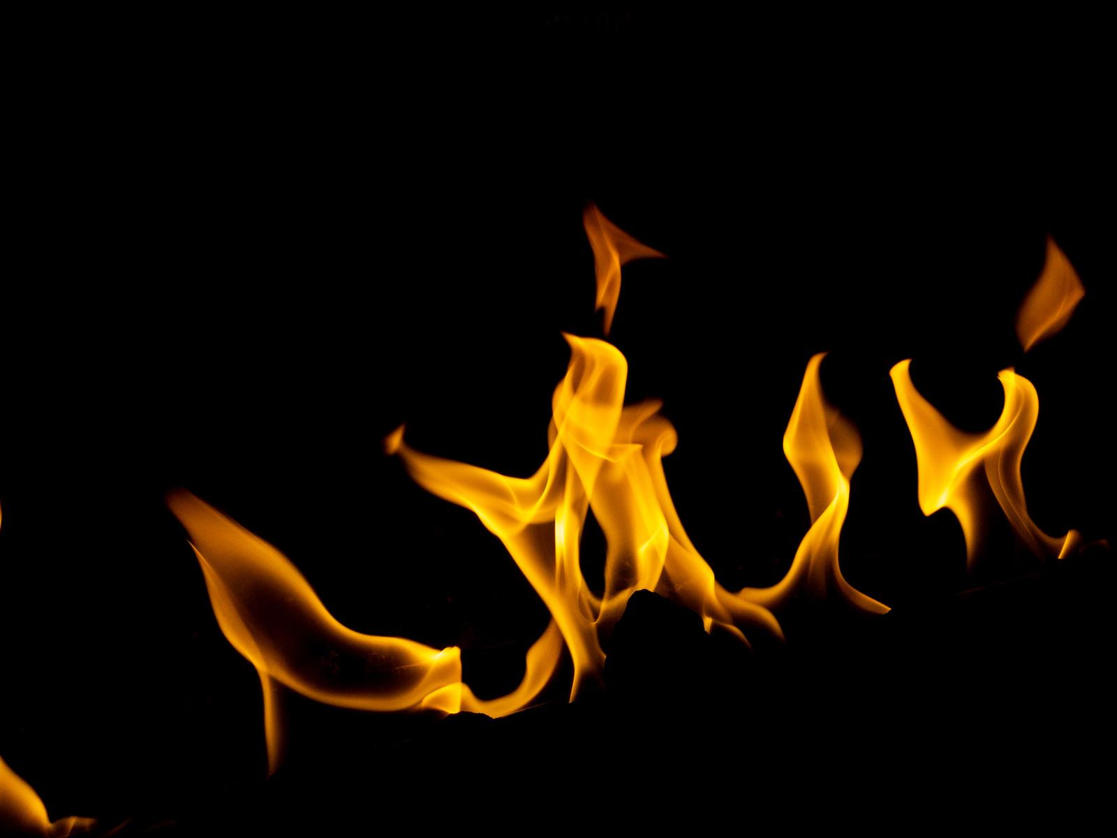 「燃え上がる炎」の写真