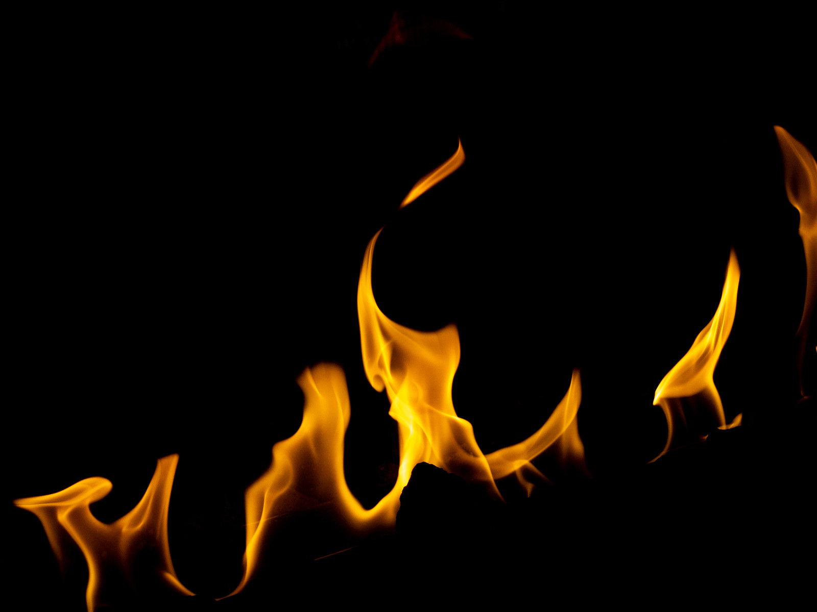 「弱めの火」の写真