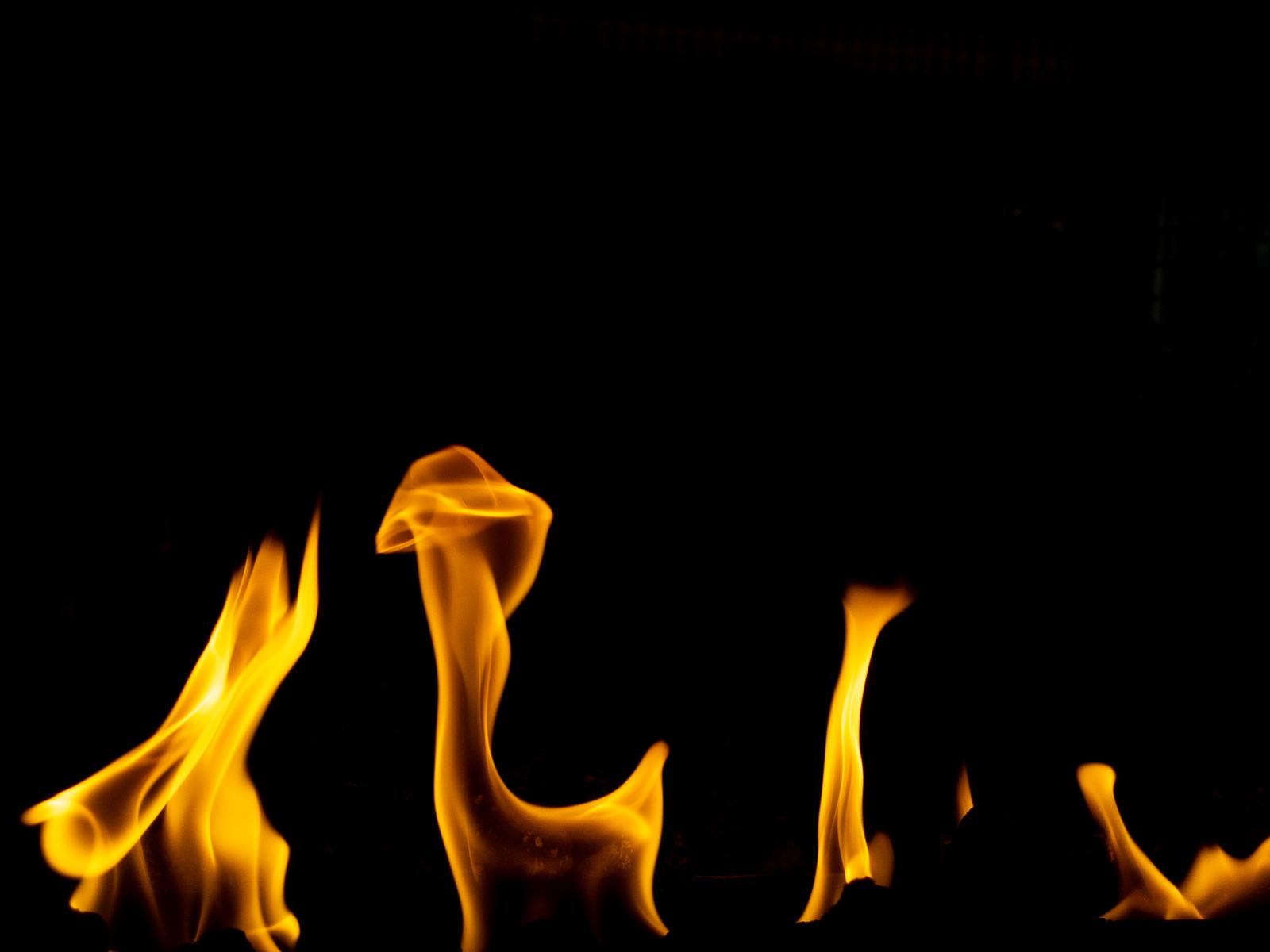 「火の様子」の写真