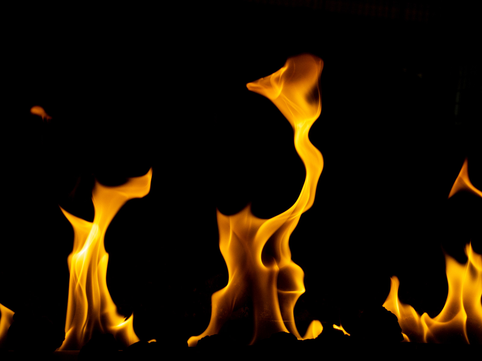 「焔(ほのお)」の写真